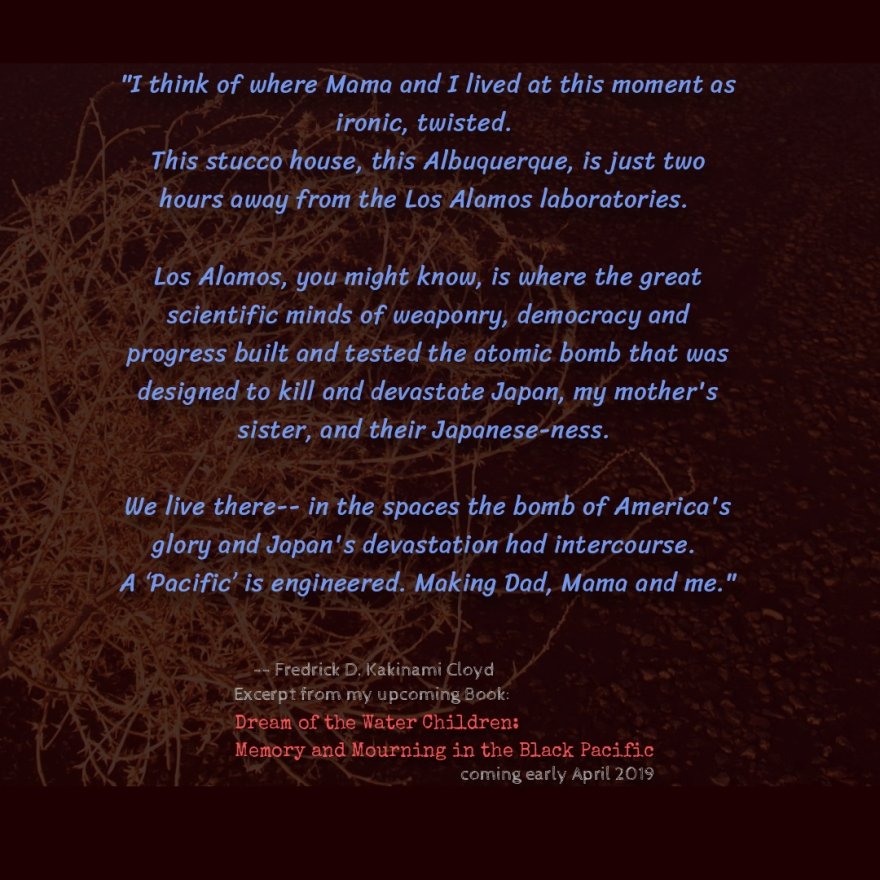 BOOK excerpt 1-Albuquerque
